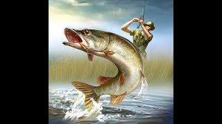 Запрудный коломенский район платная рыбалка