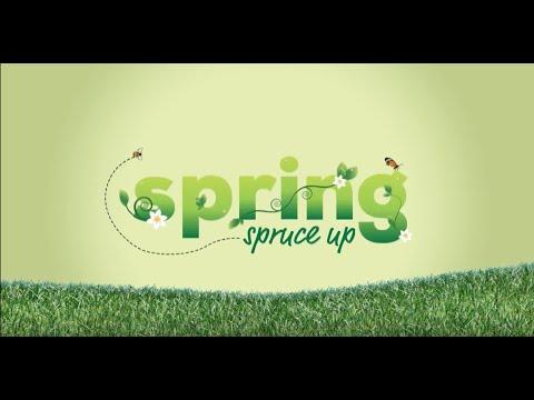Spring Spruce Up - TV