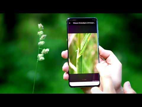 Video zur App Flora incognita