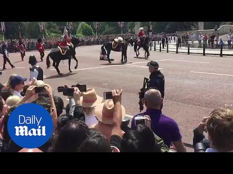 Former head of British forces Marshall Guthrie thrown from horse