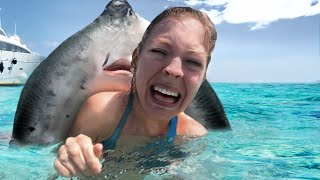 10 Coolest Places To Swim With Wild Animals