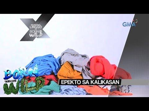 [GMA]  Born to be Wild: Epekto ng damit sa kalikasan, tatalakayin sa 'Born to Be Wild'