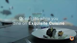 Aquatic Mall Islamabad Promotional Video by Al-Bari Group