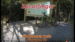 Spearfinger Trail - Fire Mountain - Cherokee, NC - 8/20/2017.