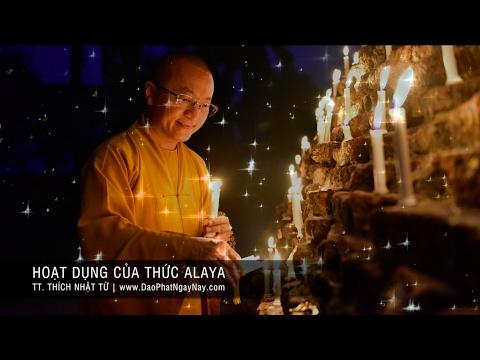 Thành Duy Thức Luận (2008) - Phần 11: Hoạt dụng của thức Alaya