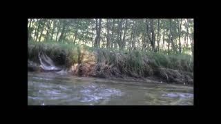 Video Alter Ego - Až hvězdy spadnou
