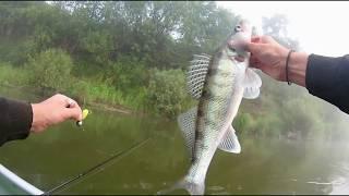 Ловля рыбы на оке в касимове