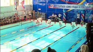 150 пловцов приняли участие в массовых соревнованиях среди спортсменов-любителей