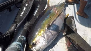 How To Clean A Yellowfin Tuna! Comment Nettoyer Un Thon Albacore!