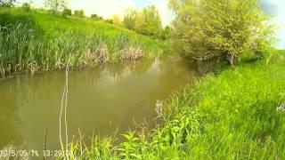 Ловля голавля в реке салгир