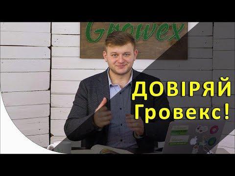 Популярные вопросы об Интернет-магазине Growex