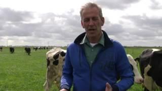 Bekijk de vlog van Bert Philipsen tussen de koeien over de eerste beweidingsproeven: