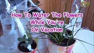 How To Water Flowers While You On Vacations - Watering Plants In Your Absence Tutorial
