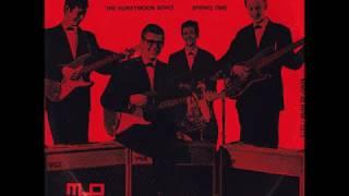 The Ricochets - The Honeymoon Song (1963)