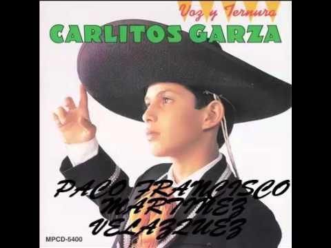 Carlitos Garza