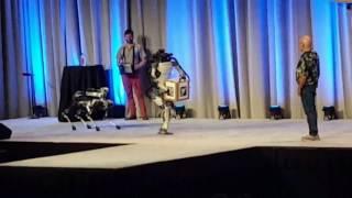 робот Boston Dynamics упал со сцены
