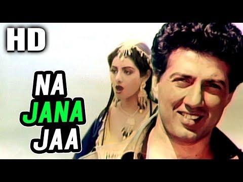 Na Ja Jaane Ja | Asha Bhosle, R.D. Burman |Joshilaay 1989 Songs | Sunny Deol, Sridevi