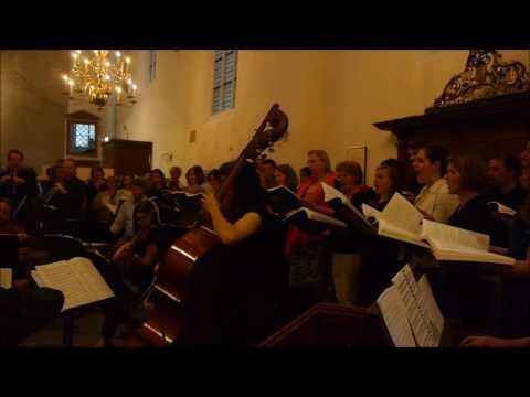 Rachel Kieneker-Munneke is de nieuwe dirigent van Vox Flevium uit Swifterbant
