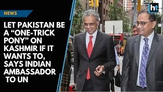 """Let Pakistan be a """"one-trick pony"""" on Kashmir if it wants to, says Indian Ambassador to UN 