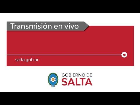 Video: Reviví en este video el homenaje y el canto de Sáenz a Güemes
