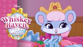 Briezy Does It | Whisker Haven Tales With The Palace Pets | Disney Junior