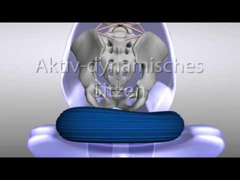 Aktiv und dynamisch Sitzen - mit dem TOGU Dynair® Ballkissen® - das Original made in Germany