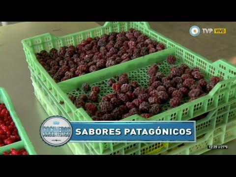 Frutos patagónicos en El Bolsón