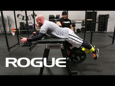 Lever Reverse Hyper-extension (plate loaded)