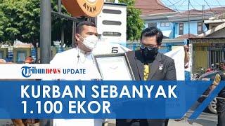 Putra Siregar Pecahkan Rekor MURI Kurban Idul Adha Terbanyak 1.100 Ekor, Disebar Seluruh Indonesia