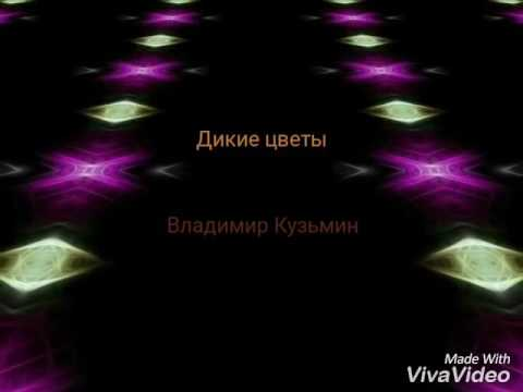Песня я желаю счастья вам счастья в этом мире большом текст