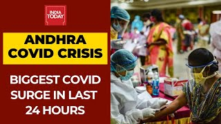 Andhra Pradesh COVID Crisis: State Reports Highest COVID-19 Tally In 24 Hours - Download this Video in MP3, M4A, WEBM, MP4, 3GP