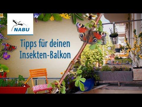 NABU Tipps für den Insektenbalkon