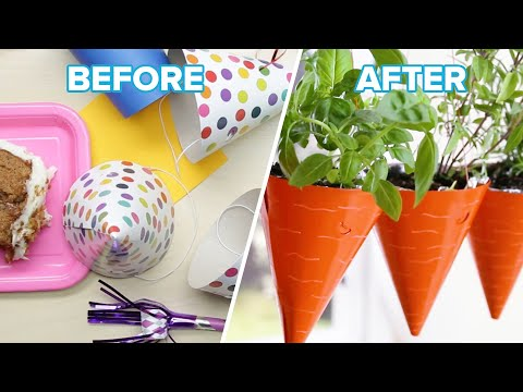 7 Plant Ideas To Add Life To Your Home