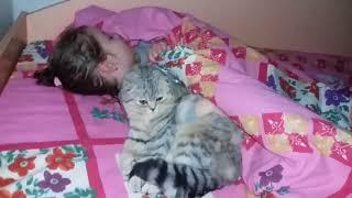 Кошка и Ребенок Спят Вместе Ночью 😻 Коты и дети Видео про животных