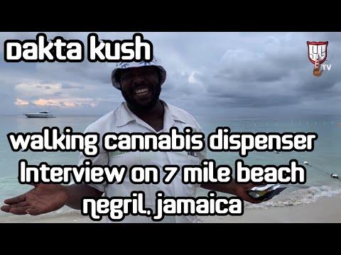 Walking Cannabis Dispenser Dakta Kush - 7 Mile Beach in Negril Jamaica Smokers Guide