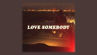 love somebody (lyrics) // lauv