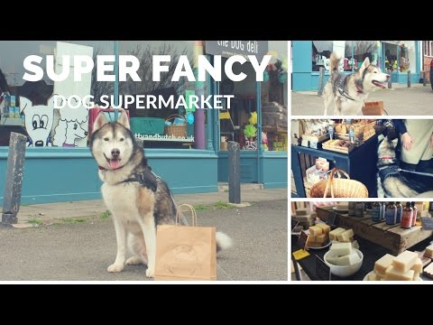 A SUPERMARKET FOR DOGS? | Puppuccino Reviews | Manchester| Chorlton