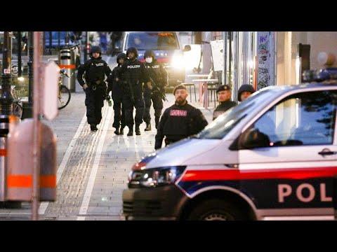 Τρομοκρατική επίθεση στη Βιέννη: 14 συλλήψεις ανακοίνωσε η αστυνομία…