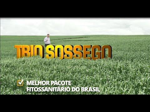 TBIO Sossego