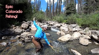 The TOP 10 fishing spots in Colorado - McFly Angler Fly Fishing