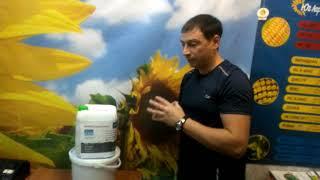 Удобрение для озимого рапса весной. Купить азотное удобрение для озимого рапса Супер Азот от компании ТД «АВС СТАНДАРТ УКРАЇНА» - видео