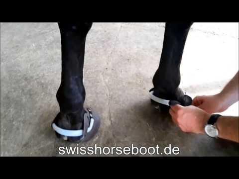 Hufschuhe anziehen - SWISS HORSE BOOT