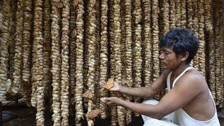 How Assam makes its Muga silk