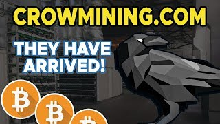 CROWMINING.com - They Have Arrived! 😱💯💰