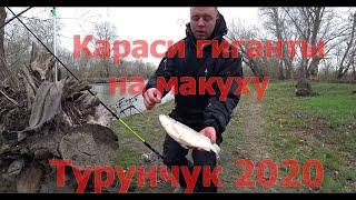 Турниры по рыбалке в украине 2020