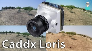 Caddx Loris Full Sized Flight Footage (Watch In 4k)