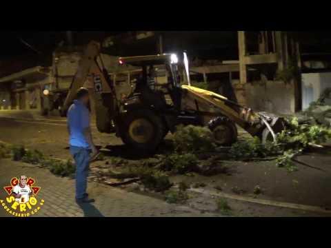 Uma árvore de grande porte caiu na Avenida Jk de Oliveira bloqueando o acesso dos veículos
