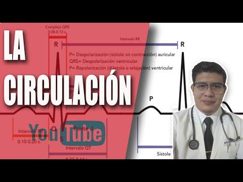 Relevancia de crisis hipertensiva