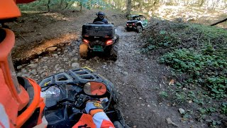 RIDE ATV IN AMAZING FOREST