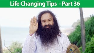 Life Changing Tips Part 36 | Saint Dr MSG Insan